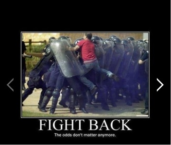 fightback_odds